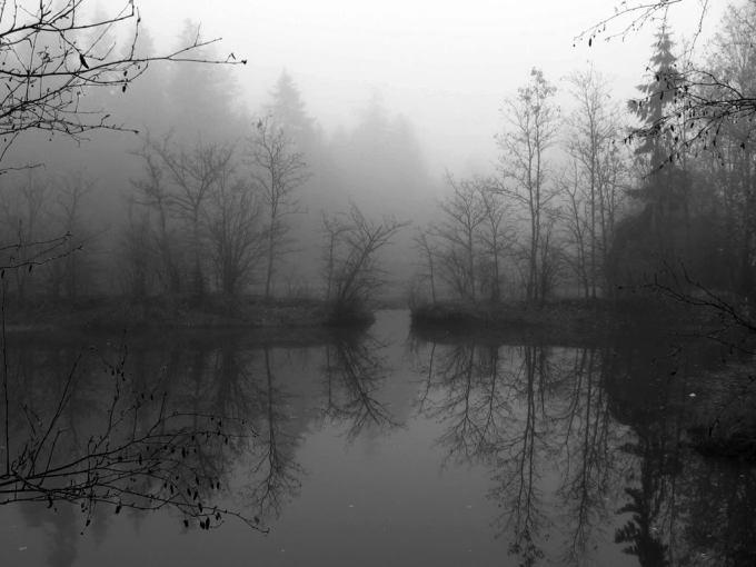 Depressive-Winter-Forest-Snow-Dark2